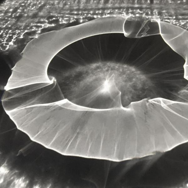 An illuminated clear glass sculpture that is flat and looks like a close up of the pupil of an eye in black and white.