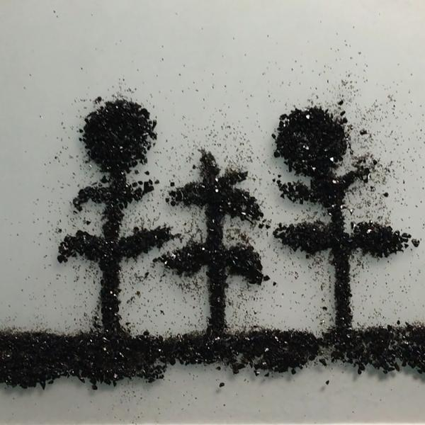 A plate of glass shows a still from a stop-motion video. Black glass frit shows three sunflowers—two with heads—rising from the ground.